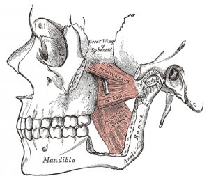 tmj disorder solution